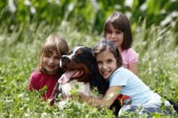 Hayvanlar ve Çocuklar